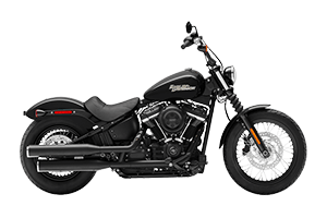 H-D Cruiser Families for sale at Adirondack Harley-Davidson